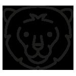 Löwen Gruppe der Kita Abdinghof