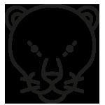 Panther Gruppe der Kita Abdinghof